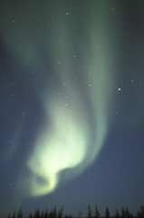 NA, Canada, Manitoba, Churchill Northern lights, aurora borealis