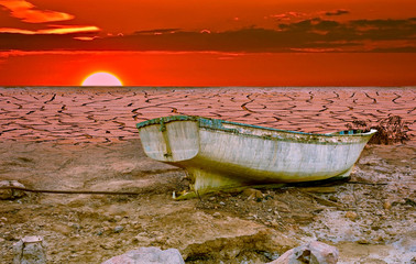 Composite conceptual image symbolizing negative consequences of global warming leading to destroying the natural ecosystems