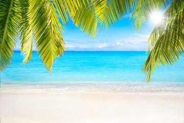 Strand mit Palmen als Hintergrund