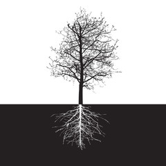 Shape of Tree without Leaves and Roots. Vector Illustration.