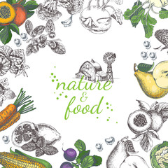 Nature food vector poster. Vintage frame with fruit, vegetables in vintage style. Sketch background.