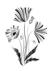 мак листья цветение листья графика
