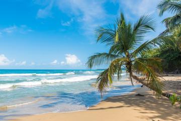 Playa Chiquita - Wild beach close to Puerto Viejo, Costa Rica
