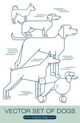 Different dog breeds.