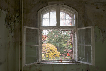 An open window in an abandoned building, Beelitz-Heilstaetten, Germany