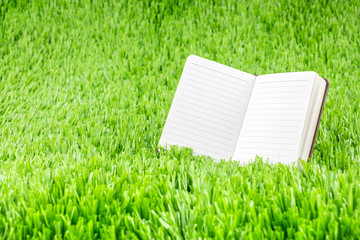 Open ruled paper notebook on green grass field,Eco Business conc