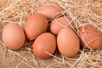 Chicken Egg,Fresh farm eggs on a wooden background