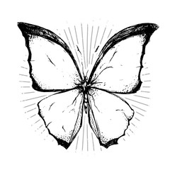 Very beautiful black and white butterfly drawn in ink. Nice element for your project.