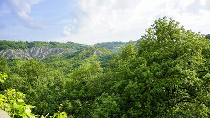 emilia hills land scape