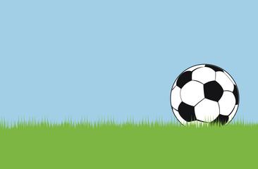 Soccer ball on green grass. Vector illustration.