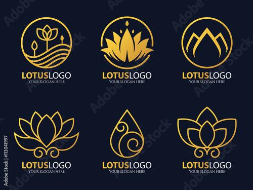 Gold Line Lotus Logo Vector Art Set Design Stock Image