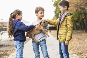 Children playing with dog outdoors