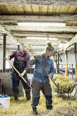 Man and woman spreading hay at barn