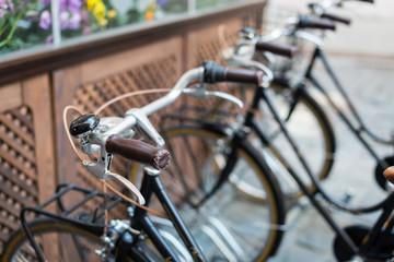 Black vintage bicycles in a bike stand