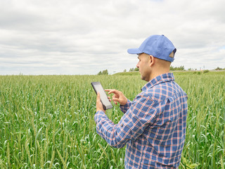 Farmer in plaid shirt controlled his field  looking at tablet