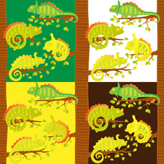 Set of seamless pattern with chameleons on the tree