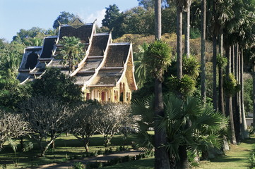 Wat Mai Suwannaphumaham and trees, Luang Prabang, UNESCO World Heritage Site, Laos, Indochina, Southeast Asia, Asia