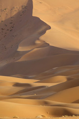 Desert Scenic