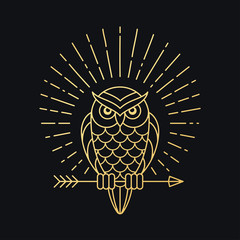 Owl with arrow emblem