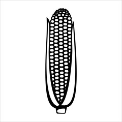 Corn line icon. Corn cob with kernels and husk. Vector Illustration