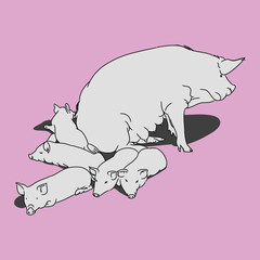 Pig and piglets (pink)