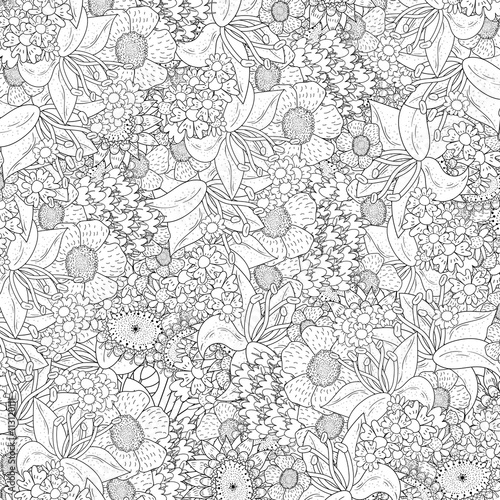 Handdrawn Floral Vector Background For Adult Coloring Book