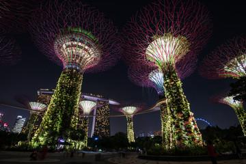 シンガポール ガーデンズ・バイ・ザ・ベイ