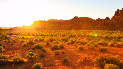 Desert over sunset in Valley of Fire State Park, Southern Nevada, USA