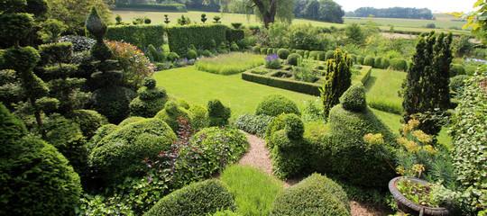 Jardin paysager avec topiaires