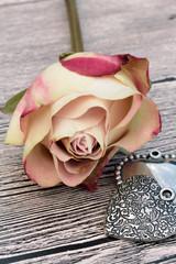 rose 11062016