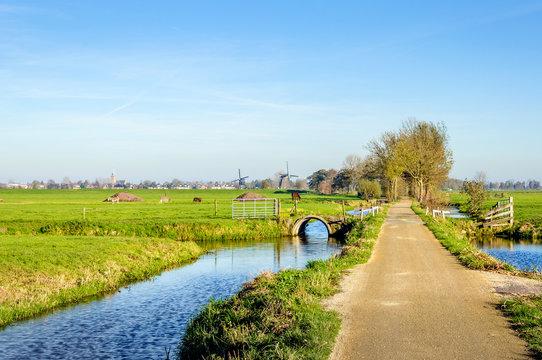 Colorful Dutch polder landscape in autumn