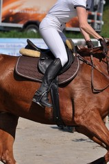 Die Reiterin mit ihrem Pferd gallopieren auf dem Turnierplatz