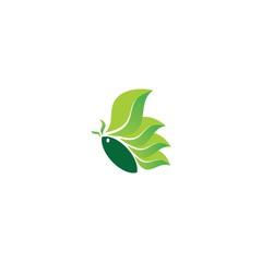 green leaf butterfly icon logo