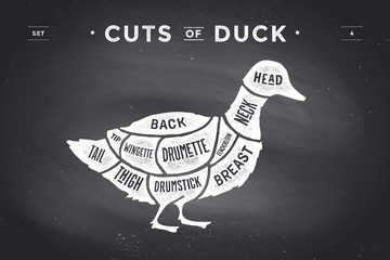 Cut of meat set. Poster Butcher diagram and scheme - Duck. Vintage typographic hand-drawn on a black chalkboard background. Vector Illustration