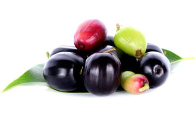 जामुन फल