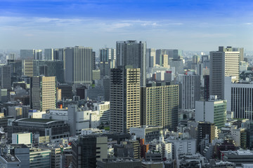 Tokyo Skyline, Cityscape of Tokyo City, Japan - Tokyo is the wor