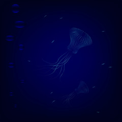 Transparent jellyfishes swim in deep underwater. dangerous jellyfishes hunted for little fishes