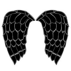 bird or angel wings