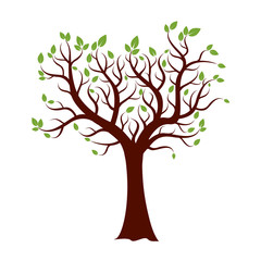 Shape of Tree, and Green Leafs. Vector Illustration.