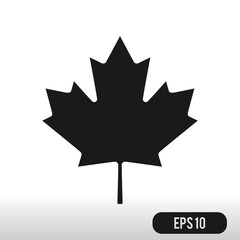 Canadian Leaf Icon  Isolated on White Background. Black silhouet