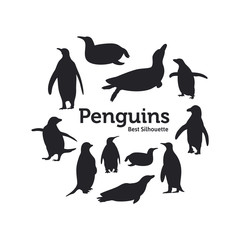 Penguin silhouette on the white background