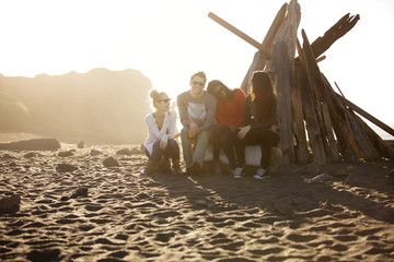 Portrait of friends sitting by stack of driftwood on beach