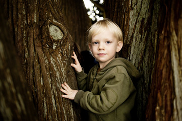 Portrait of young boy (6-7) climbing tree