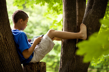 Boy (8-9) with digital tablet sitting in tree