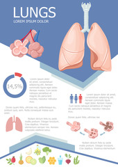 Human lung infographic