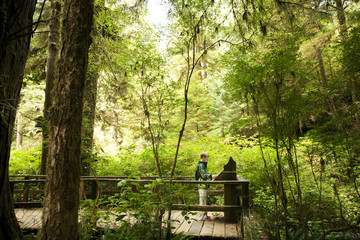 Side view of boy reading information while standing on footbridge in forest