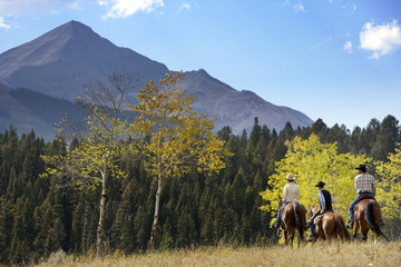 Friends riding horse on grassy field against blue sky