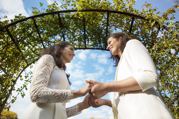 Low angle view of lesbians holding hands during wedding ceremony against sky