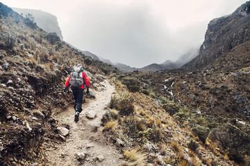 Rear view of hiker walking along mountain trail