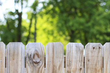 Fence and trees outdoors backyard background